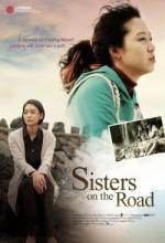 Kız Kardeşler Yolda (2009) afişi