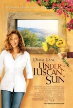 Kızgın Güneş (2003) afişi