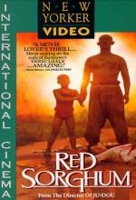 Kızıl Darı Tarlaları