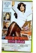 Kızını Dövmeyen Dizini Döver (1977) afişi