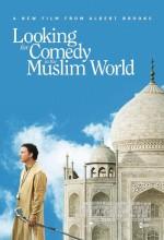 Komedi Aranıyor (2005) afişi