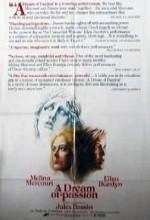 Kravgi Gynaikon (1978) afişi