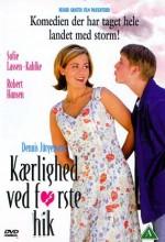Kærlighed Ved Første Hik (1999) afişi