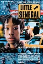 Küçük Senegal