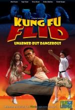 Kung Fu Flid (2009) afişi