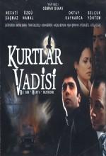 Kurtlar Vadisi (2004) afişi