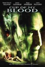 Kutsal Kase (2005) afişi