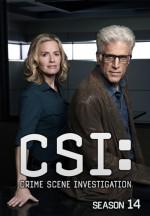 Kanıt Peşinde Sezon 14 (2014) afişi