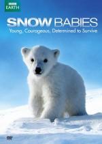 Kar Bebekleri (2012) afişi