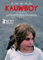 Kauwboy (2012) afişi