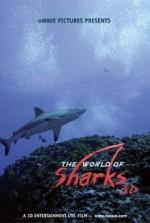 Köpekbalıkları (2003) afişi