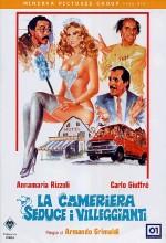 La Cameriera Seduce I Villeggianti (1980) afişi