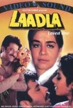 Laadla (1994) afişi