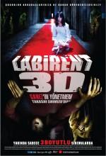 Labirent 3D (2009) afişi