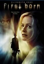 Lanetli Bebek (2007) afişi