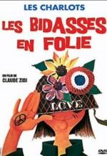 Les Bidasses En Folie (1971) afişi