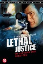 Adalet Yok (2011) afişi