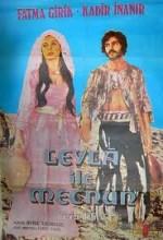 Leyla İle Mecnun (1972) afişi