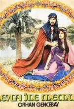 Leyla İle Mecnun (1982) afişi