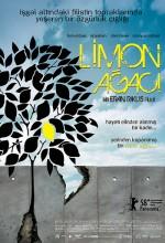 Limon Ağacı Afişi