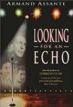Looking For An Echo (2000) afişi