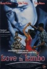 Love in Limbo (1993) afişi