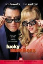 Şanslı Sayılar Afişi