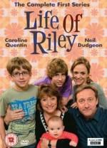 Life of Riley Sezon 3 (2011) afişi