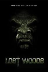 Lost Woods  afişi
