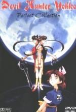 Mamono Hunter Yôko Part 3 (1993) afişi