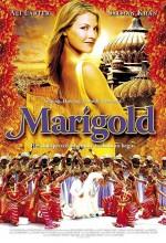 Marigold (2007) afişi