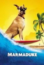 Marmaduke (2010) afişi