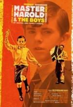 Master Harold... And The Boys (2010) afişi