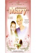 Matchmaker Mary (2008) afişi