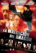 Max Havoc: Curse Of The Dragon (2004) afişi