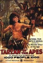 Maymunların Tarzanı