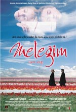 Meleğim (2004) afişi