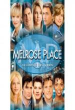 Melrose Place (1992) afişi