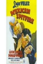Mexican Spitfire (1940) afişi