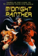 Midnight Panther (1998) afişi