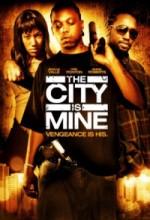 The City is Mine (2008) afişi