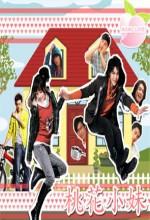 Momo Love (2009) afişi