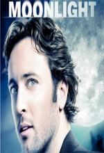 Moonlıght (2008) afişi