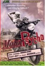 Motor Psycho (1965) afişi