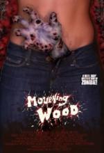 Mourning Wood (2010) afişi