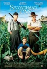 Muhteşem Üçlü (2003) afişi