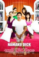 My Name ıs Dick (2008) afişi