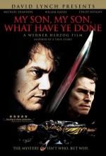 Benim Güzel Oğlum, Ne Yaptın Sen ? (2009) afişi