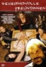 Mysterious Friends (2003) afişi