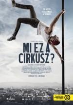 Mi ez a cirkusz? (2017) afişi